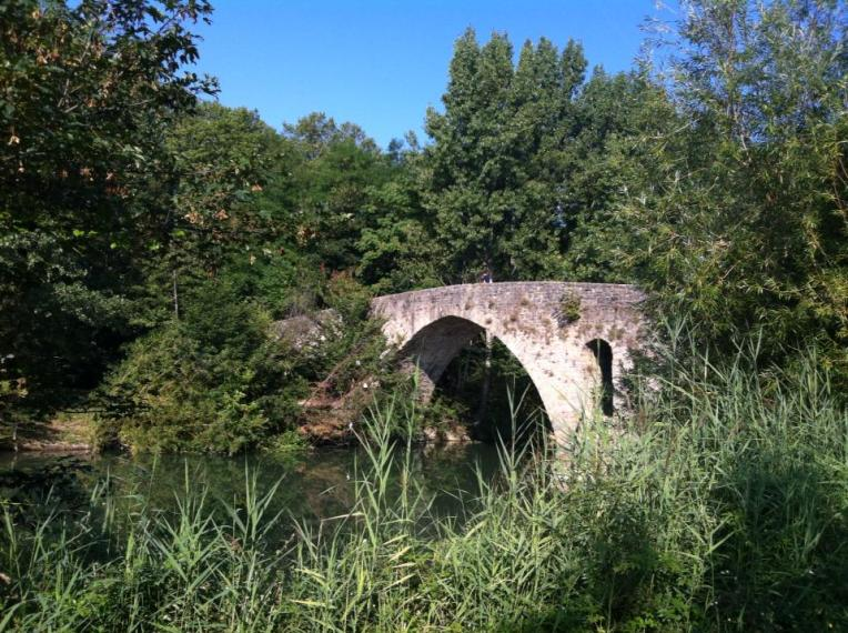Puente Magdelena