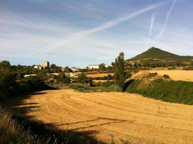 Villamayor de Monjardin from a distance