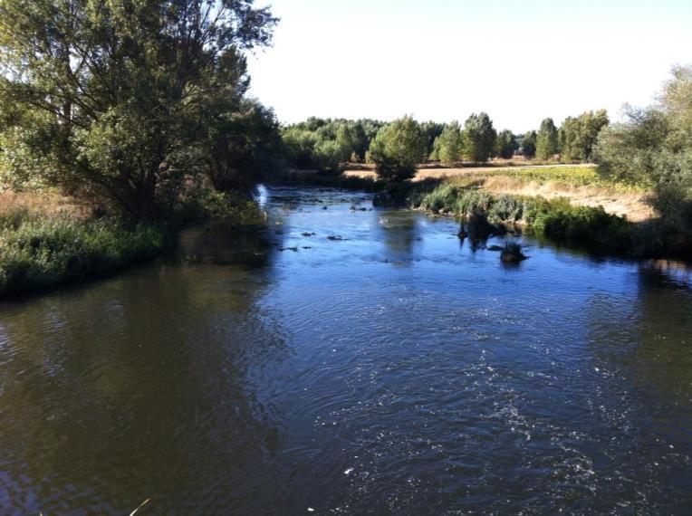 Rio Arlanzon, near Burgos