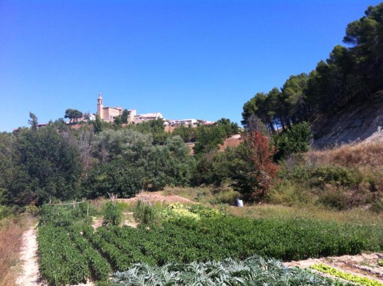 Gardens near Portillo de las Cabras, Pass of the Goats, Los Arcos
