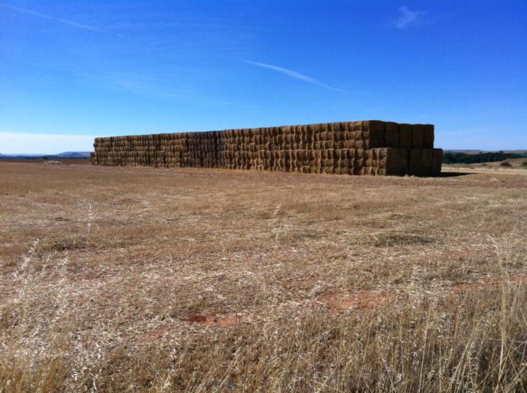 Hayfield and haybales outside of Hontanas