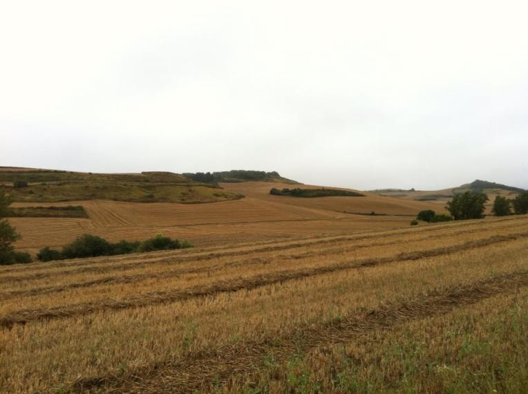Farmland outside of Castildelgado