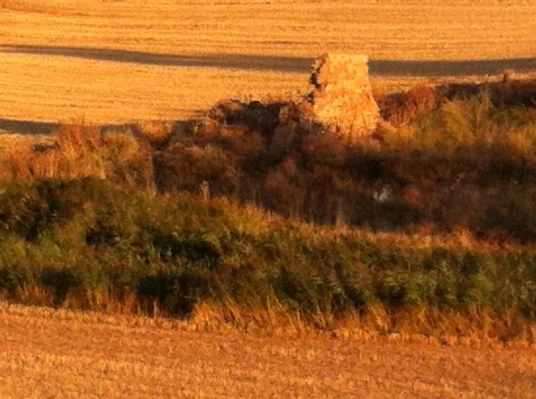 Ruins near Torres del Rio