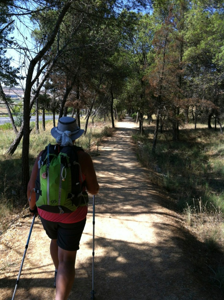 Trail leading to Logrono