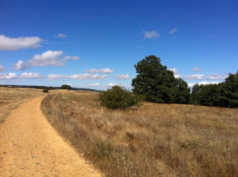 Meseta-like trail crossing the mountains to San Juan de Ortega