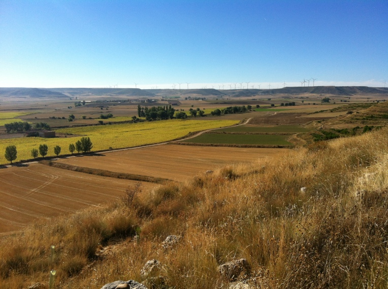 """Farmland as viewed from the trail up """"Liar's Hill"""""""