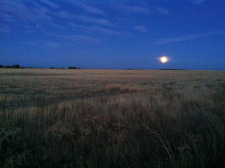 Moon set at dawn near El Burgo Ranero