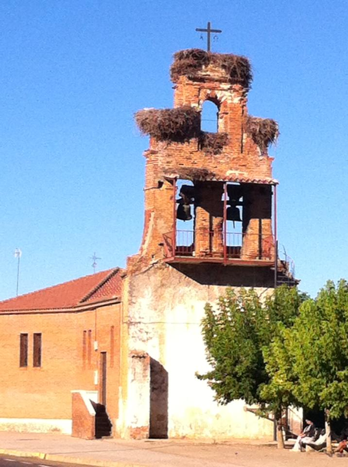 Church in San Miguel, with huge nests in the bell façade
