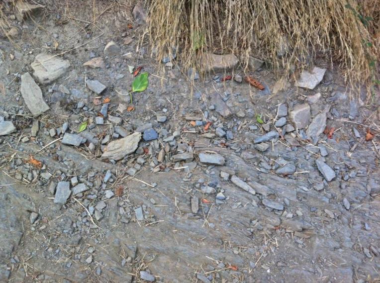 Loose gravel | Surface change 3 on trail leaving Riego de Ambrós