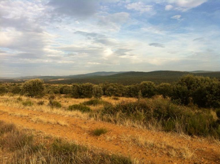 Vista near Santa Catalina de Somoza