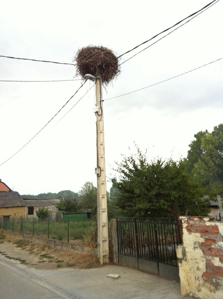 Stork nest in lamp post near Fuentes Neuvas