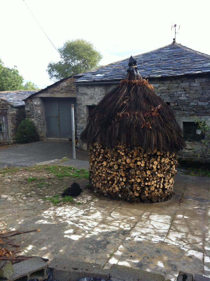 Thatch-covered firewood storage