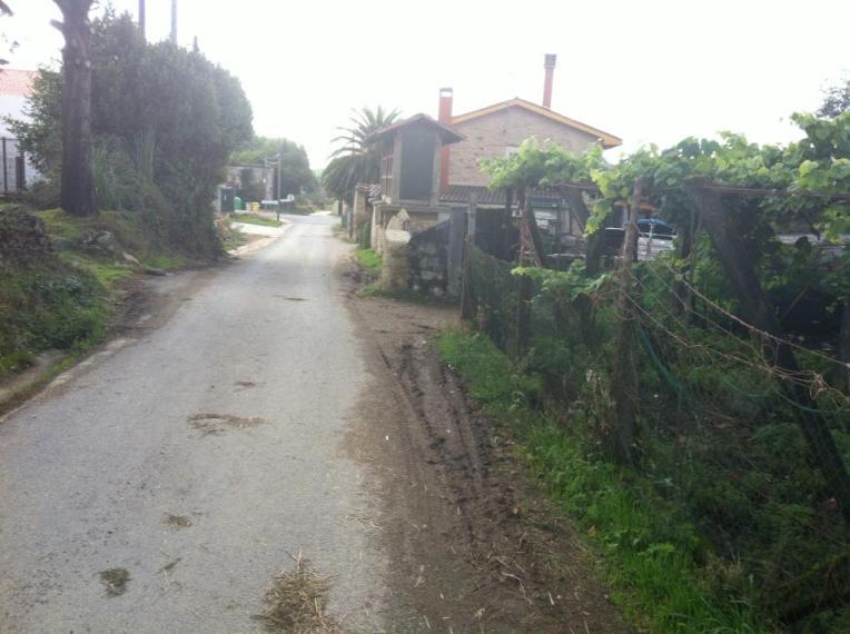 Trail coming into O Pedrouzo