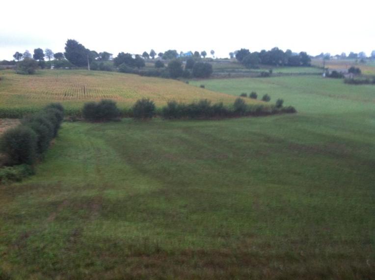 Vista near Salceda