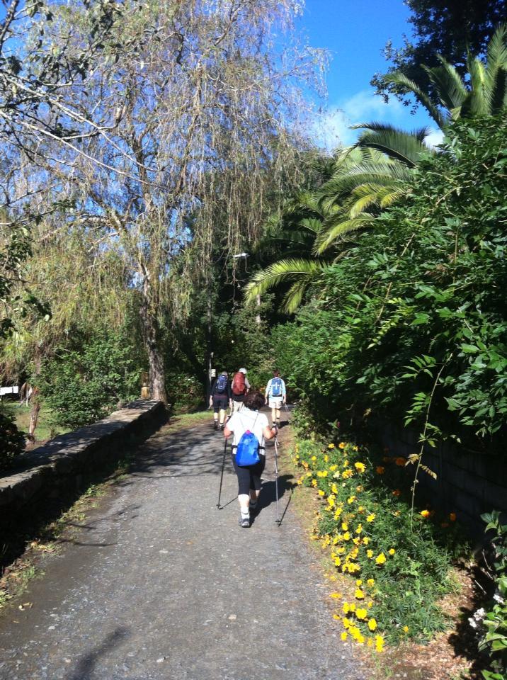 Trail near Salceda