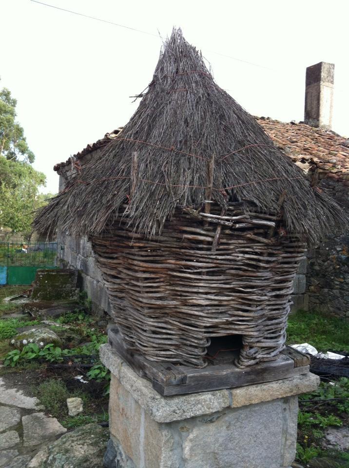 Thatch-roofed mailbox near Ribadiso