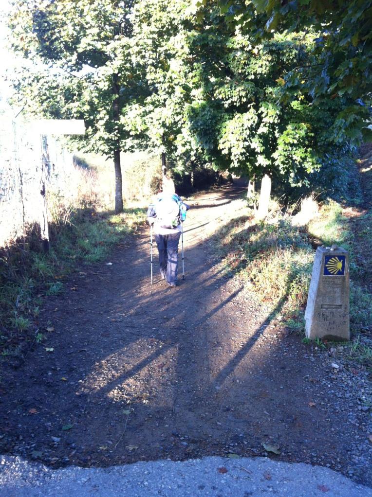 Tracy on trail near Santiago