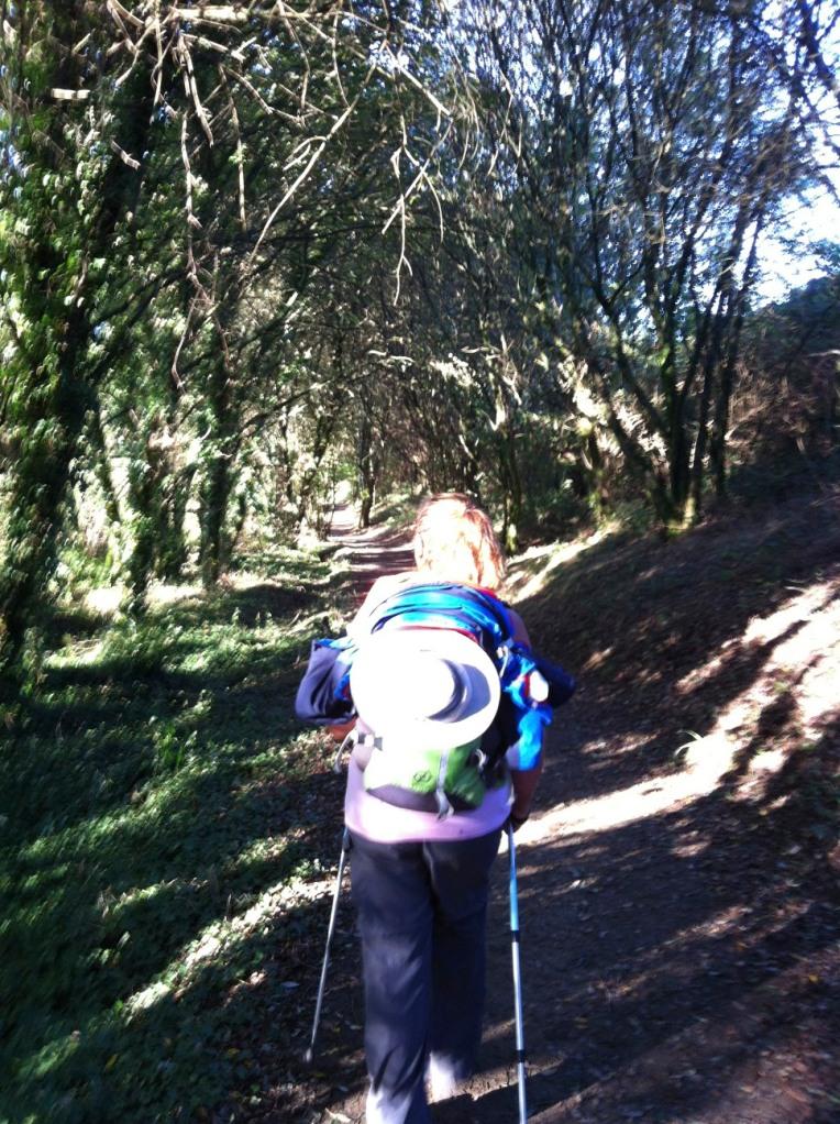 Tracy on trail near Villamaior