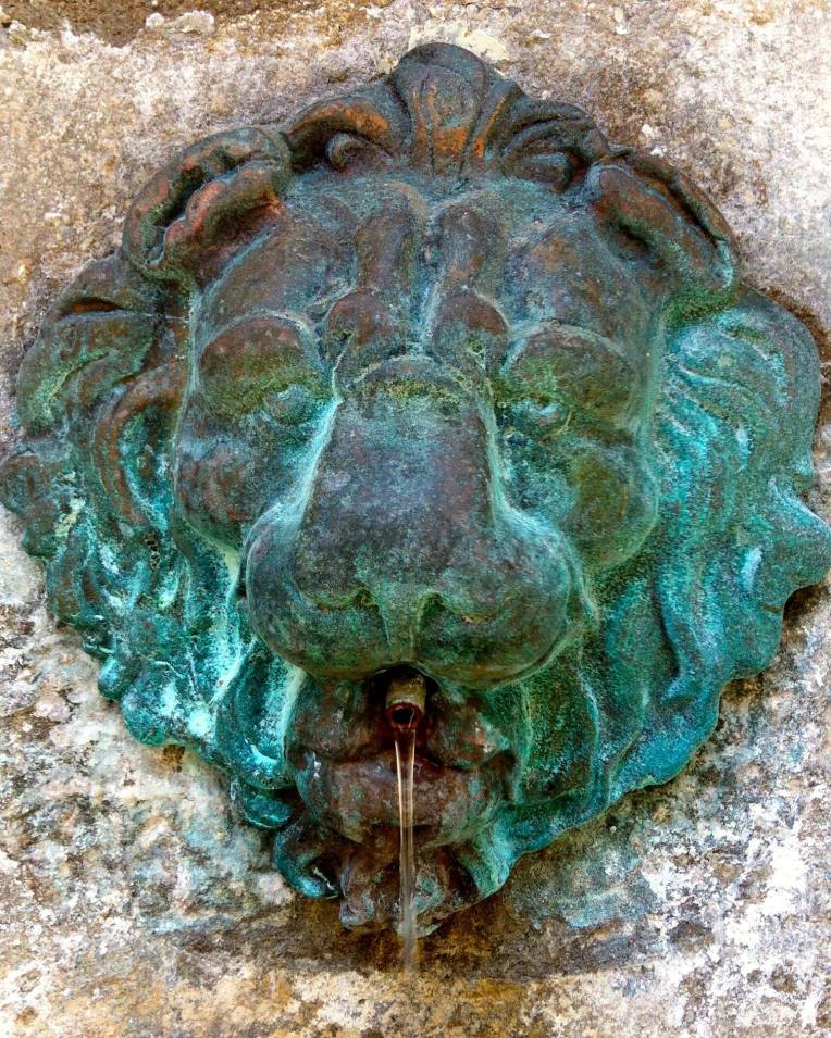 Verdigris on the lion's head fountain located behind the Portail des Jacobins (Jacobin Gate.)