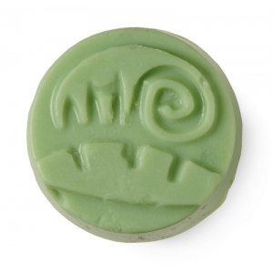 Jungle Conditioner bar by Lush (from catalog)